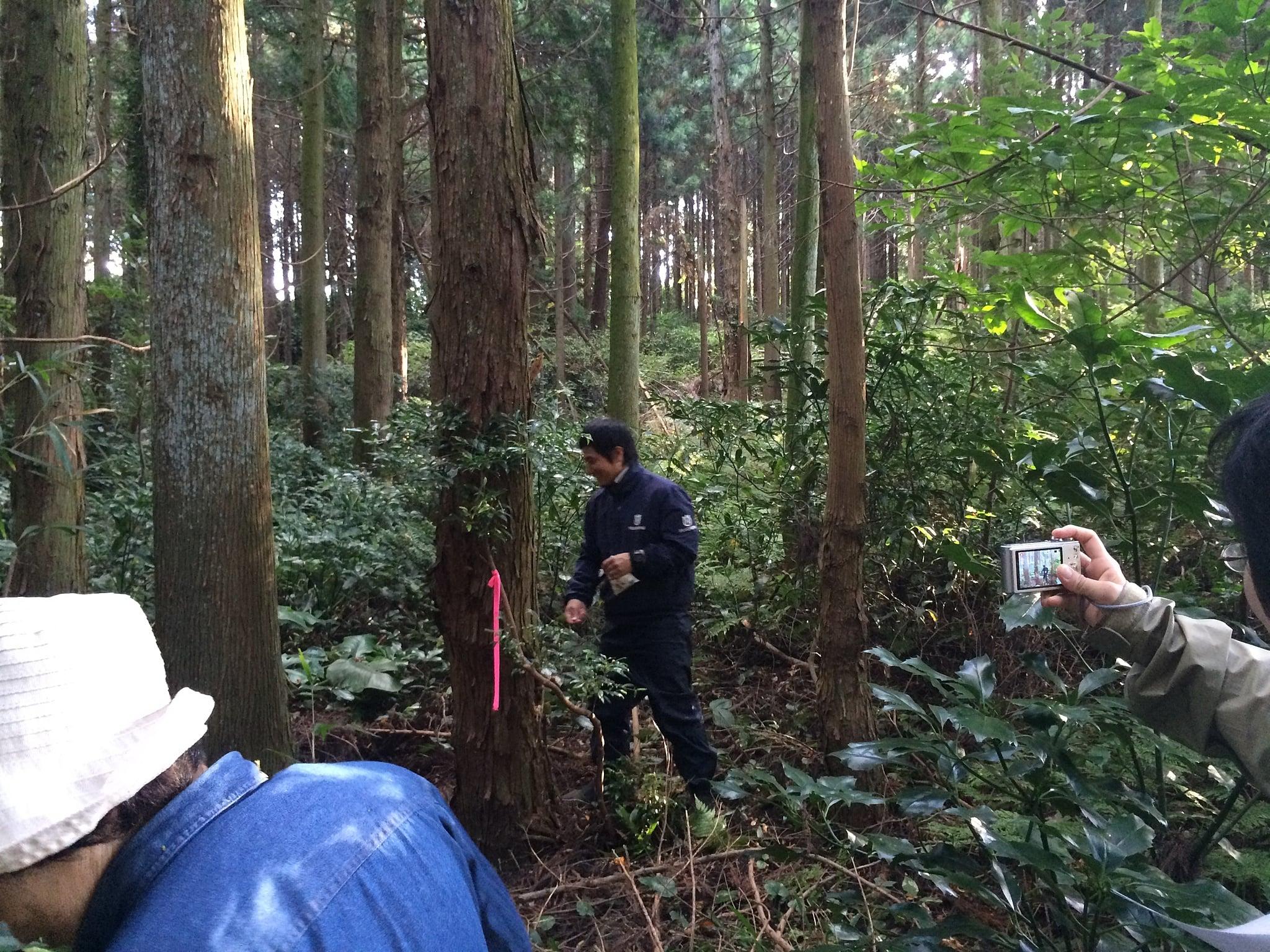 http://ogura-sekkei.jp/files/libs/14/2015110710262239.JPG